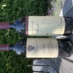 Barolo & Barbaresco…